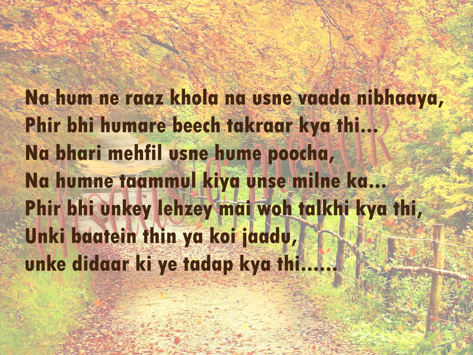 sad shayri, shayari in hindi